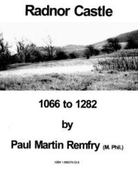 Cover of Radnor Castle 1066 to 1282 by Paul Martin Remfry